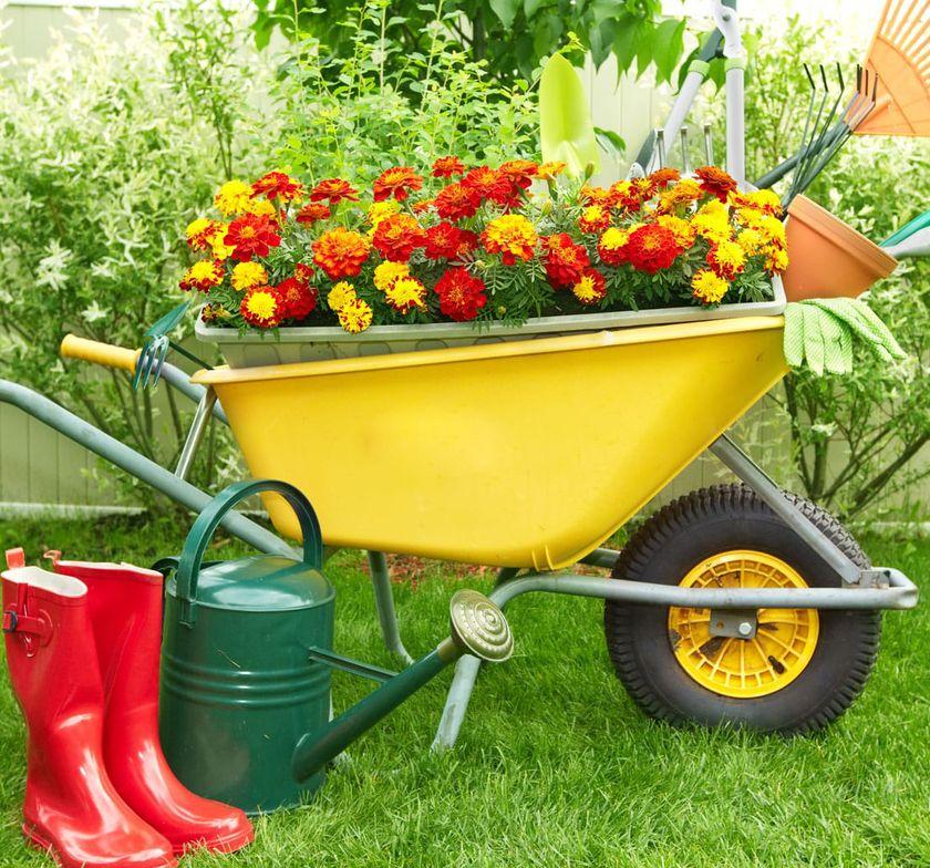 29.06. - 03.07.2020 Dzięcięca Agroturystyka